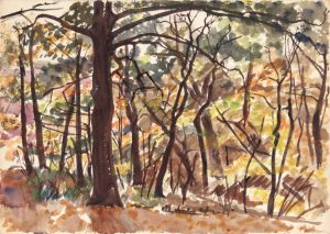 1946 Autumn Leaves in Pennsylvania Watercolor 9.875 x 14