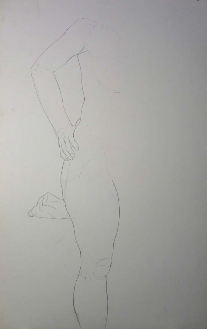 Half of a Standing Nude Pencil 22 x 14
