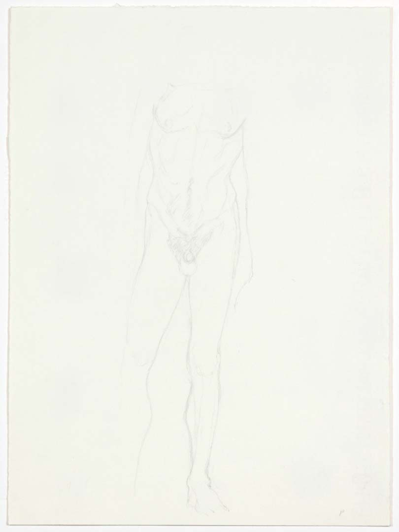 Standing Male Nude Pencil 13 x 9.5