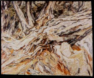 1957 Roots (Fallen Tree) Oil on Canvas 36 x 44